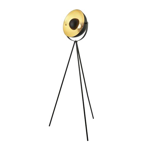 Danneel Black And Gold Coloured Floor Lamp 8022BK