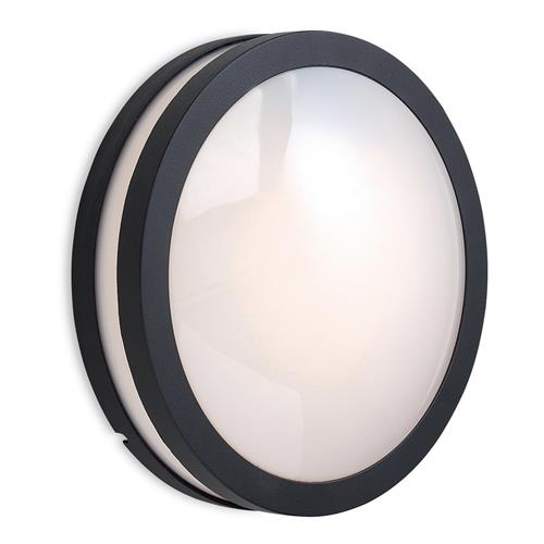 Alesia IP54 Outdoor Wall Light 4835-20