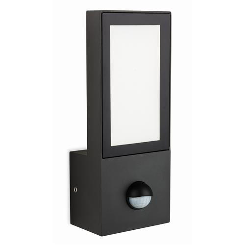 Darlynn LED Graphite Security Wall Light 2373-20GP