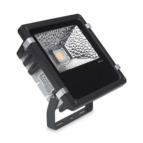 Proy Black LED Dedicated Outdoor Floodlight 05-9841-05-Cl