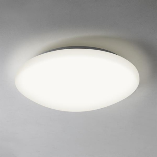 Led Bathroom Ceiling Light Massa 350 The Lighting Superstore