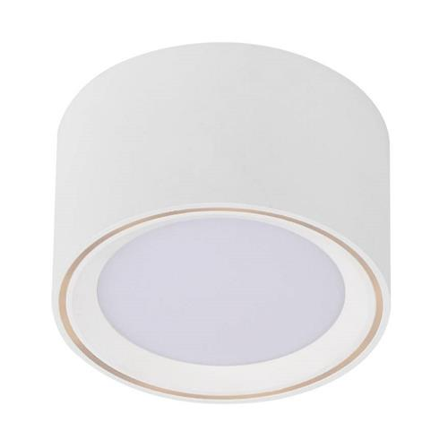 Fallon White Surface Mounted Dimmable Downlight 47540101