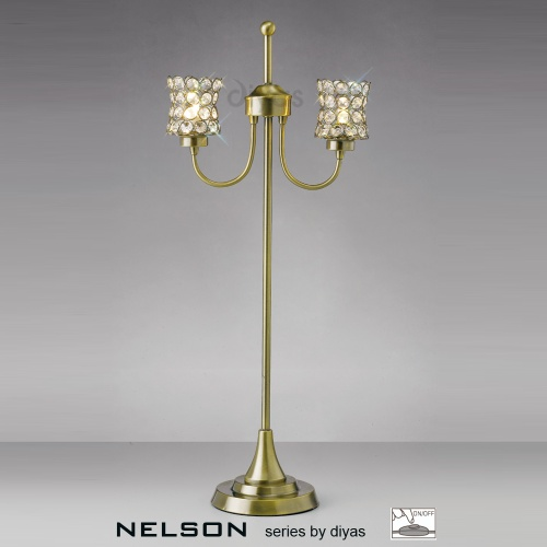 IL20663 Nelson 2 Light Table Lamp