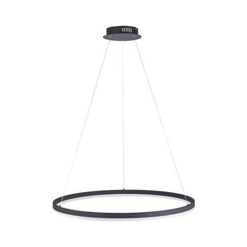 Titus Large LED Dedicated Anthracite Pendant Light 2383-13