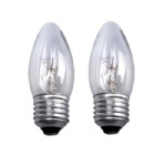 ES 25W Pack of Two lamps
