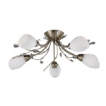 Gardenia 5 Light Ceiling Fitting
