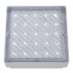 IP68 LED Walk Over Light 9913WH