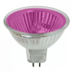20W 12 Degree 12v MR16 Coloured Halogen Lamp