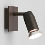 6119 Magna Bronze Single Spot Light