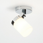 Cosmo Bathroom Ceiling Light 39616