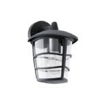 Aloria Outdoor Wall Light 93098