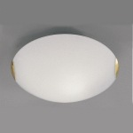 Opal Glass Ceiling Light CF5023