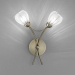 CHLORIS Double Wall Light FL2207/2