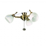 Florence Ant Brass 220268